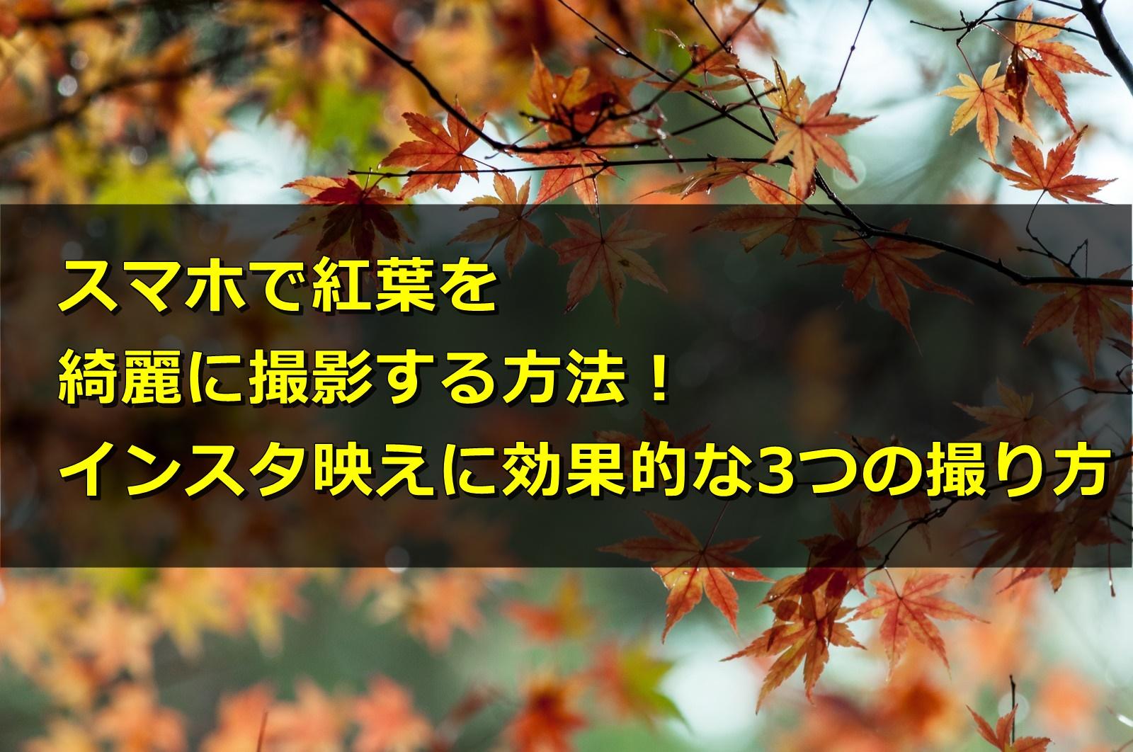 スマホで紅葉を撮影する方法!インスタ映えに効果的な3つの撮り方